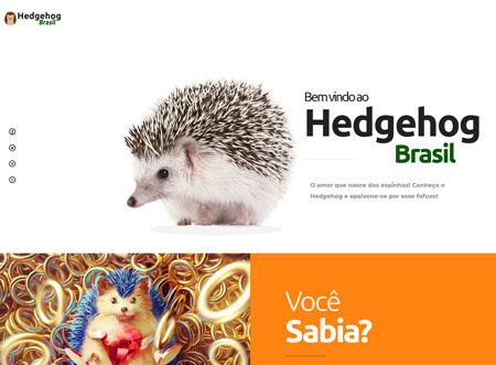 Hedgehog Brasil